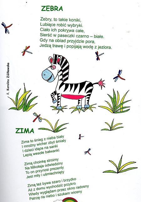 Wojciech Ziółkowski Zebra I Zima Reporter 24pl